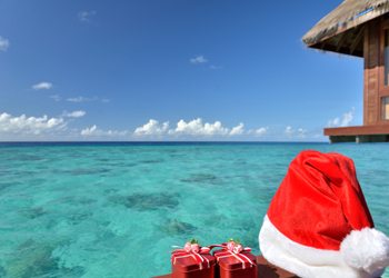 Christmas and New Year Holidays
